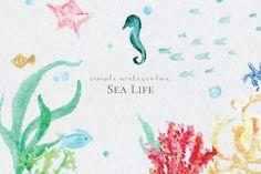 Watercolor Sea Life - Illustrations