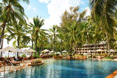 Thailand Hotels - Online hotel reservations for Hotels in Thailand Phuket, Hotel Reservations, Pattaya, Chiang Mai, Oh The Places You'll Go, Beach Resorts, Bangkok, Travel, Viajes