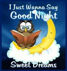 To my grandkids....miles away but close to my heart....I Just Wanna Say, Good Night...Sweet Dreams....