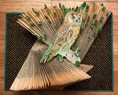 Post 9 March 10 Paper Cutting & Altered Book Artist Rachael Ashe is visual artist, currently living in Vancouver, BC, Canada. She is an emerging artist that does paper cutting, mixed media altered books, and photography. www.rachaelashe.com