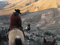 Heading into Bruneau Canyon at Lone Tree, Idaho photo Rachel Larsen source: http://thesagebrushsea.files.wordpress.com