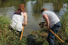 Pond Lab - Anna and Tonya using dip nets to collect pond invertebrates.