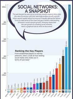 Nutzerzahlen der Netzwerke #SocialMedia