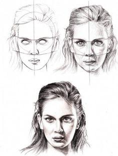 anatomy drawing