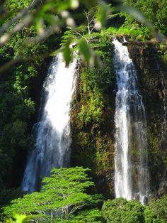 "Kauai's ""Must Visit"" Destinations"