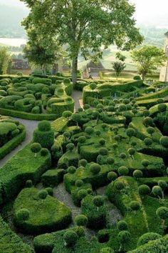 Gardens of the Chateau de Marqueyssac, France