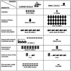 Large Scale vs. Small Scale Fisheries Benefits