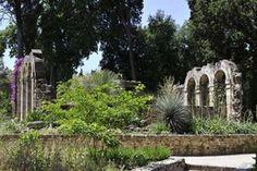 Jardin des plantes de Montpellier - Le plus ancien jardin botanique de France