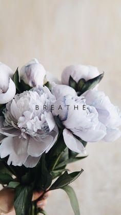 Vintage Flowers Wallpaper, Beautiful Flowers Wallpapers, Flower Phone Wallpaper, Dark Flowers, Pastel Flowers, Pretty Flowers, Exotic Flowers, Deco Floral, Flower Aesthetic