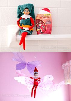 Our Elfie Rojo was found in the shower one morning and also riding my daughter's butterflies in her room.