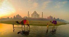 India es increíble