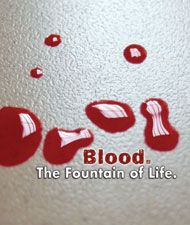 1000 images about one pint up to three lives on for Can a person with tattoo donate blood