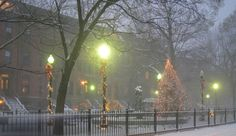 These 10 fun things to do in Boston in December will keep you warm - Christmas tree lightings, ice skating, skiing, Boston sports.