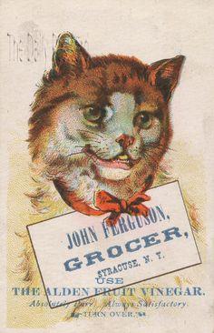Vintage trade card