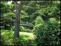 Botanic Gardens, Chicago, Illinois