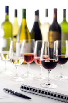 A Tasting Primer: Easy Tips to Learn About & Enjoy Wine
