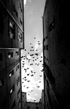 Portofolio Fotografi Urban - Tyxo | The Premier Fashion Community #URBANPHOTOGRAPHY