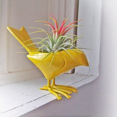 Colorful Canary Airplant RESERVED for Kris by SASSYspaces on Etsy