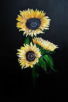 Maľované obrazy - Otremblak / SAShE.sk My Arts, Plants, Plant, Planets