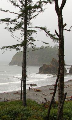 Visited La Push Washington and was walked on the shore of First Beach ☑️ La Push Washington, Forks Washington, All Nature, Pacific Northwest, North West, Nature Photography, Night Photography, Landscape Photography, Beautiful Places