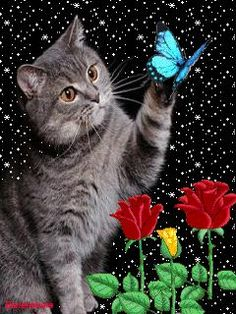 GIFS HERMOSOS: lindas flores encontradas en la web Love You Hubby, Gifs, Animiertes Gif, Free To Use Images, Giant Paper Flowers, Beautiful Gif, Butterfly Wallpaper, Cute Animal Drawings, Animal Quotes