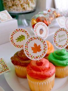 Thanksgiving party cupcakes!  See more party planning ideas at CatchMyParty.com!