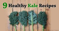 Here are nine healthy kale recipes that you should try at home to enjoy the benefits of this superfood. http://articles.mercola.com/sites/articles/archive/2014/09/21/9-healthy-kale-recipes.aspx