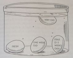 How to tell if your eggs are fresh. Place egg in cup of cold water.