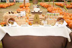 Pumpkin Party #pumpkin #party