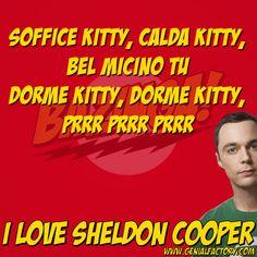 Il meglio di #SheldonCooper #iloveSheldonCooper #TheBigBangTheory #BigBangTheory #JimParsons #bazinga #softkitty