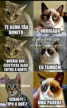 memes en espanol / memes ` memes hilarious can't stop laughing ` memes hilarious ` memes funny ` memes to send to the group chat ` memes divertidos ` memes about relationships ` memes en espanol Funny Grumpy Cat Memes, Crazy Funny Memes, Stupid Funny Memes, Funny Relatable Memes, Funny Cats, Grumpy Kitty, Funny Quotes, Cat Quotes, Hilarious Sayings