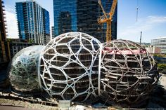 Amazon biospheres at the company headquarters in Seattle . Pavilion Architecture, Modern Architecture, Downtown Seattle, Cool Office, Business Journal, Emerald City, Canopies, Nests, Offices
