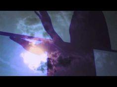 Dominique A - Vers le bleu (Azzura video)