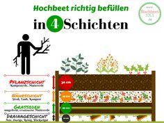 HOCHBEET BEFÜLLEN: Tolle Infografik zum Thema Hochbeet befüllen in 4 Schichten