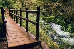 18 Exquisite hikes under 5 miles Oregon