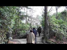 miyajima Jan 1 2013 osaka to hiroshima to miyajima to mount misen in 1 day for tourist - http://osaka-mega.com/miyajima-jan-1-2013-osaka-to-hiroshima-to-miyajima-to-mount-misen-in-1-day-for-tourist/