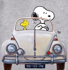 Snoopy Und Woodstock, Snoopy Love, Charlie Brown Quotes, Charlie Brown And Snoopy, Snoopy Images, Snoopy Pictures, Peanuts Cartoon, Peanuts Snoopy, Good Morning Snoopy