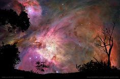 backyard nebula