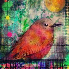 """Bird on a Wire""  #birdart #ipadart #digitalart #painting Robin Mead"