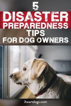Be smart, be prepared!