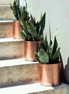 Love the copper pots!