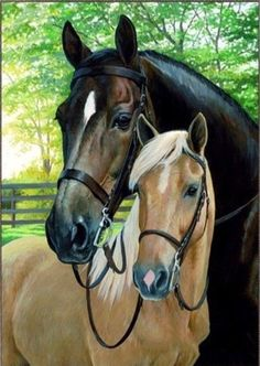 In Love with Horses - Easy DIY Diamond Painting Kits - OwlCube Canvas Wall Art - luise Painted Horses, Horse Drawings, Animal Drawings, Two Horses, Horse Portrait, Diamond Art, Diamond Cross, 5d Diamond Painting, Cross Paintings