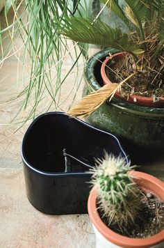 Artek Riihitie plant pot A, large, blue gloss Garden Solutions, Danish Design Store, Potted Plants, Plant Pots, Ceramic Planters, Organic Shapes, Glazed Ceramic, Scandinavian Design, Garden Tools