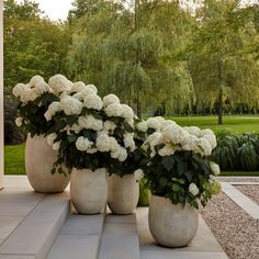 Outdoor Landscaping, Front Yard Landscaping, Outdoor Gardens, House Landscape, Dream Garden, Garden Planning, Garden Inspiration, Beautiful Gardens, Planting Flowers