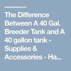 The Difference Between A 40 Gal. Breeder Tank and A 40 gallon tank - Supplies & Accessories - Hamster Hideout Forum