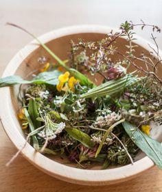 Wild Herb Pesto recipe by Gradonna Mountain Resort in Austria. - Flowers on My Plate Slow Food, A Food, Herb Pesto Recipe, Kiss The Cook, My Plate, Green Kitchen, Kraut, Seaweed Salad, Summer Recipes