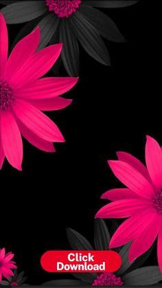 Garden Wallpaper, Red Wallpaper, Colorful Wallpaper, Flower Wallpaper, Unique Wallpaper, Flower Backgrounds, Black Backgrounds, Wallpaper Backgrounds, Wallpaper Desktop