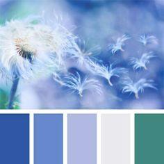 Палитра для холодных цветотипов