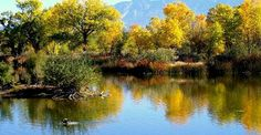 2. Rio Grande Nature Center State Park