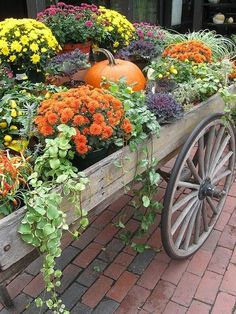 Pumpkins and flowers in a wooden cart